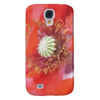 Flor roja romántica de la amapola