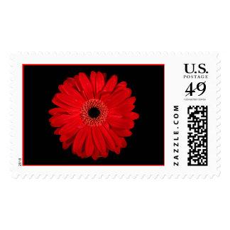 Flor roja sellos