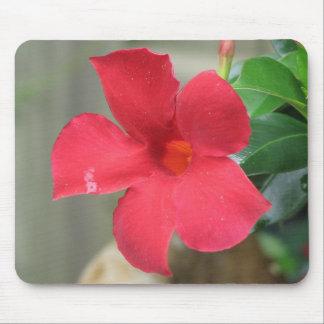 Flor roja tapetes de ratón