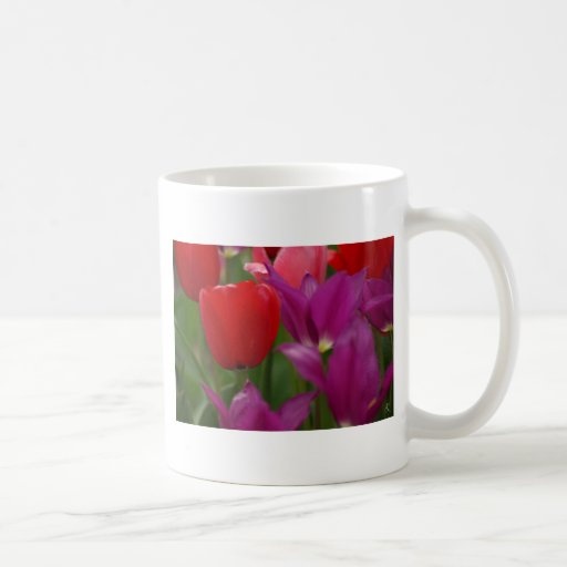 Flor roja taza