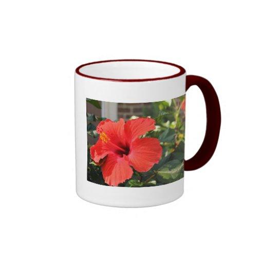 Flor roja tazas de café