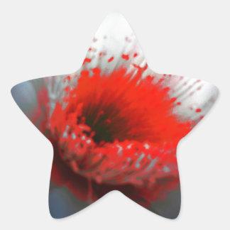 Flor roja y blanca pegatina en forma de estrella