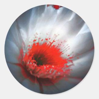 Flor roja y blanca pegatina redonda