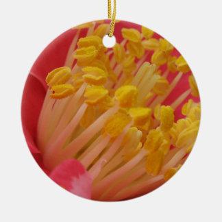 Flor roja y estambre amarillo ornamentos de reyes