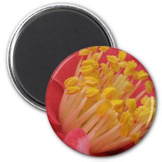 Flor roja y estambre amarillo iman para frigorífico