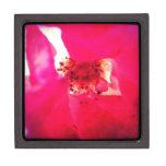 Flor rojo caja de recuerdo de calidad