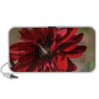 Flor rojo de la dalia portátil altavoz