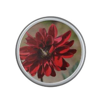 Flor rojo de la dalia altavoz