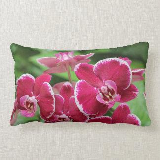 Flor rojo de la orquídea almohadas