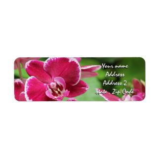 Flor rojo de la orquídea etiqueta de remite