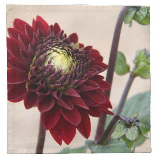 Flor rojo oscuro servilletas imprimidas