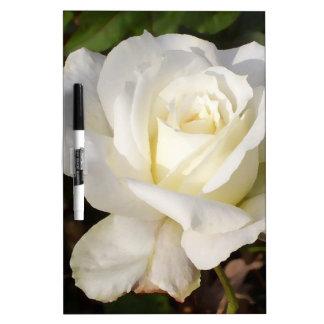 Flor romántico del rosa blanco de CricketDiane Pizarra Blanca