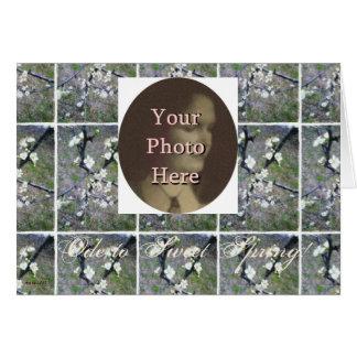 Flor romántico rústico del ciruelo (personalizable tarjeta