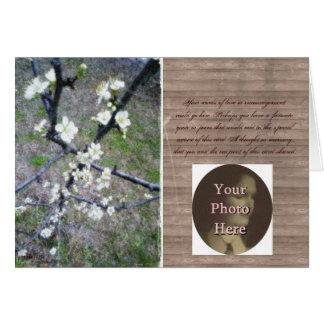 Flor romántico rústico del ciruelo (personalizable tarjeton