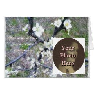 Flor romántico rústico del ciruelo (personalizable tarjetas