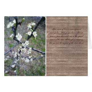 Flor romántico rústico del ciruelo tarjetón