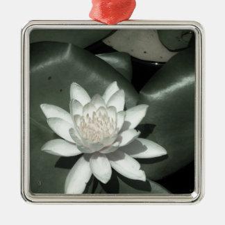 flor rosa clara blanca del lirio de agua del loto ornamentos de navidad