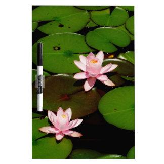 flor rosa clara del lirio de agua del loto tablero blanco