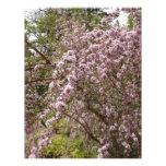 Flor rosa claro del árbol plantillas de membrete