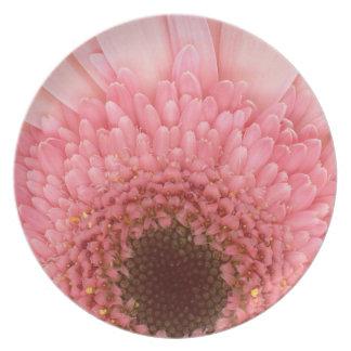 Flor - rosa del AMOR de I Platos De Comidas
