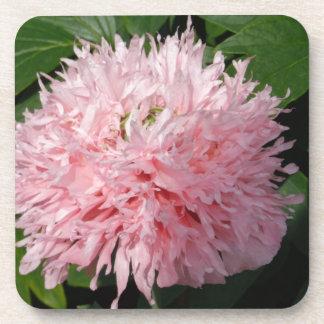 Flor rosa posavaso