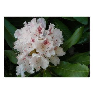 Flor rosada 2 del rododendro tarjeta de negocio