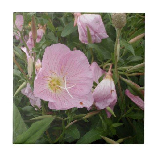 Flor rosada azulejo ceramica