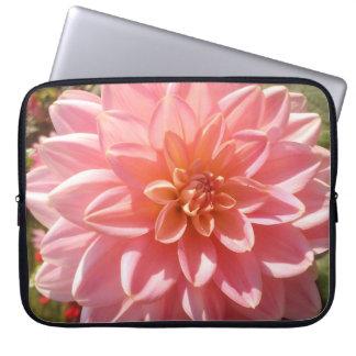 Flor rosada bonita de la dalia en verano mangas portátiles