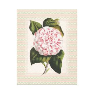 Flor rosada botánica de la camelia del vintage ele impresión en lienzo