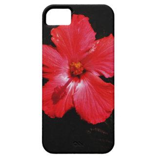 Flor rosada caliente del hibisco en negro iPhone 5 Case-Mate funda