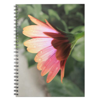 Flor rosada note book