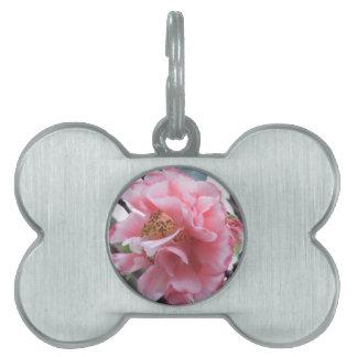 Flor rosada de Camelia Placa De Mascota