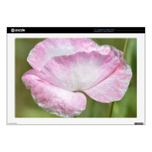 Flor rosada de la amapola de Islandia Calcomanías Para Portátiles