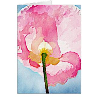 Flor rosada de la amapola de Islandia Tarjetas