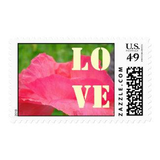 Flor rosada de la amapola de los sellos del AMOR