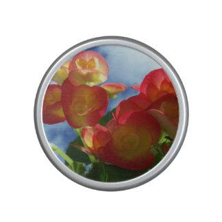 Flor rosada de la begonia altavoz bluetooth