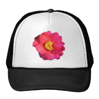 Flor rosada de la camelia gorros
