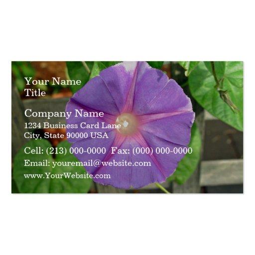 Flor rosada de la correhuela en un día soleado plantilla de tarjeta de visita