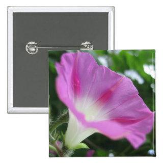 Flor rosada de la correhuela pin cuadrado