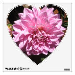 Flor rosada de la dalia