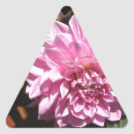 Flor rosada de la dalia calcomania de triangulo