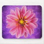 Flor rosada de la dalia en fondo púrpura de la acu tapete de ratones