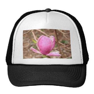 Flor rosada de la magnolia en la floración gorros bordados