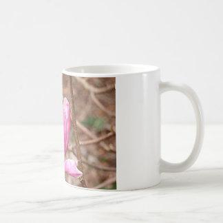 Flor rosada de la magnolia en la floración tazas de café