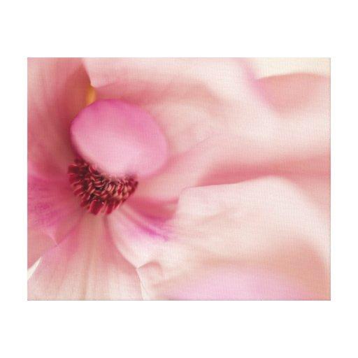 Flor rosada de la magnolia - plantilla de las magn impresion en lona
