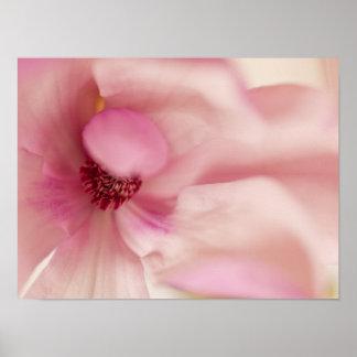 Flor rosada de la magnolia - plantilla de las magn impresiones