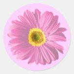 Flor rosada de la margarita pegatina redonda