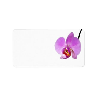Flor rosada de la orquídea etiquetas de dirección