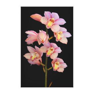 Flor rosada de la orquídea impresión en lienzo estirada