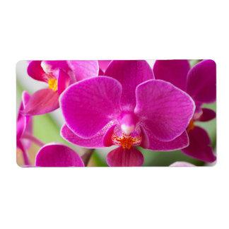 Flor rosada de la orquídea - plantilla floral de l etiquetas de envío